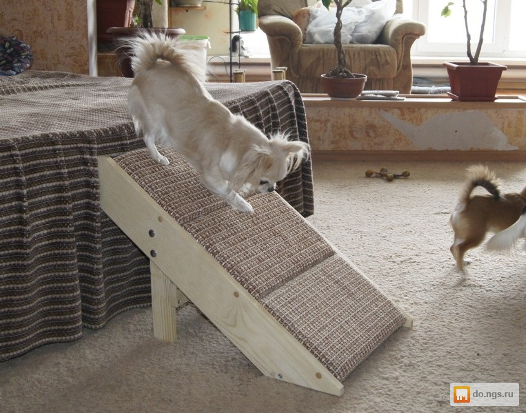 Сделать лесенку для собак своими руками - МАРЛИН