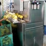 Машина для яблоко чистки и удаления сердцевины 400 кг/час, Иркутск