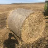 Продам солому пшеничную, Иркутск